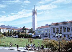 Considering Berkeley