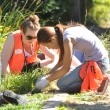 Public health graduate students pull weeds at Halcyon Commons, a community-designed and built park in South Berkeley.