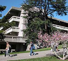 About the Public Health Major | UC Berkeley School of Public Health
